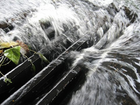 Photo of water down the drain