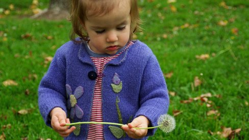 Photo of child with dandelion